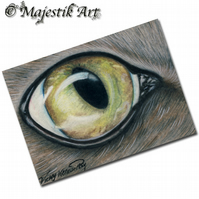 ACEO Print Tabby Cat Eye JUST ONE LOOK