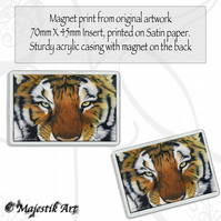 Tiger Magnet SEEKER Big Cat Wildlife VK