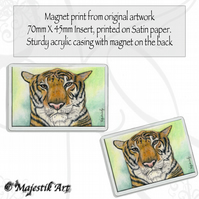 Tiger Magnet CONTEMPLATION Animal Feline VK