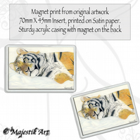 Tiger Magnet SERENITY Big Cat Feline VK