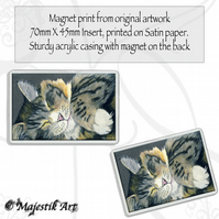 Maine Coon Magnet SLUMBER Cat Animal VK