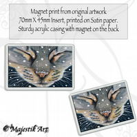 Tabby Cat Magnet COLD STUFF Animal VK