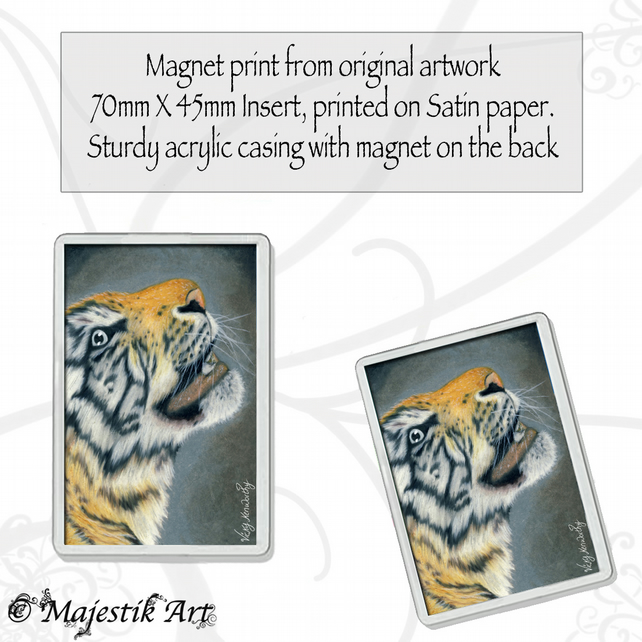 Tiger Magnet GAZE Wildlife VK