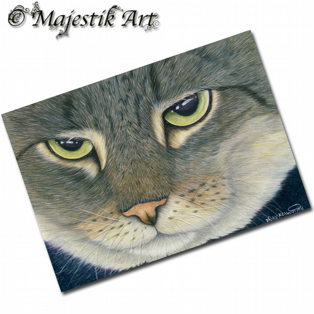 ACEO Print Tabby Cat  THE LOOK