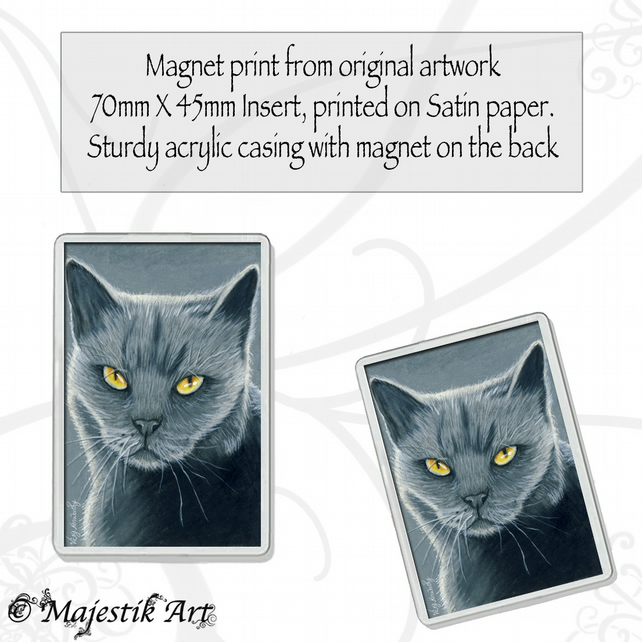 British Shorthair Magnet SHADES OF GREY Cat VK