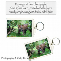Jaguar Keyring Photography by VK