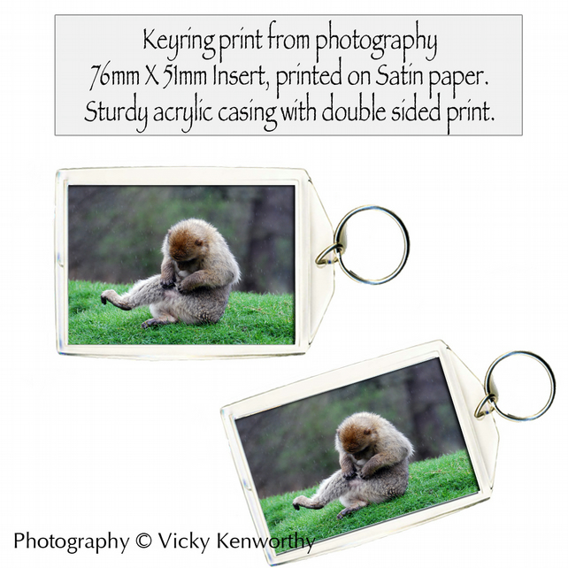 Japanese Macaque Keyring Photography by VK