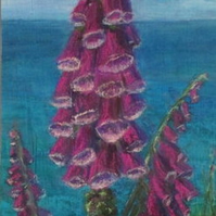 Foxgloves on a Cornish Cliff  - original mixed media foxglove flower painting