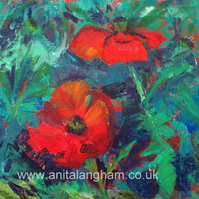 Cornish Poppies - original mixed media poppy flower painting