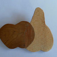 Hand Cut Wood Veneers, Marquetry Brooch, Apple and Pear