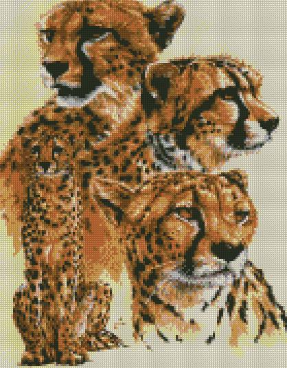 cross stitch kit celerity cheetah
