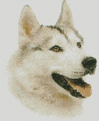 cross stitch chart siberian husky dog folksy
