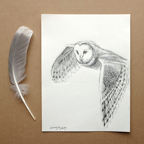 Flying owl pencil drawings - photo#14