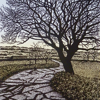 Almost There, handmade print, beautiful tree over a country road on Dartmoor