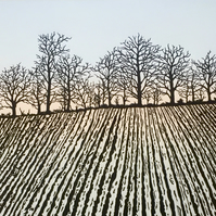 Ploughed Field, winter furrows, Devon landscape, original print