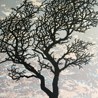 Hawthorn, handmade original windswept Dartmoor tree