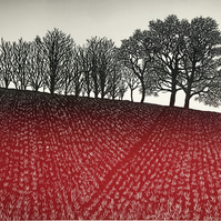 Renewal, spring, hopeful, growing, Devon field, red earth, trees on top