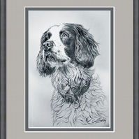 Framed Pencil Portrait