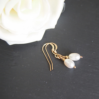 Classic ivory freshwater pearl and rolled gold earrings