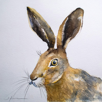 Hare II - original watercolour painting, wildlife art