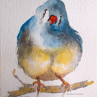 Little finch - original watercolour bird painting, wildlife art