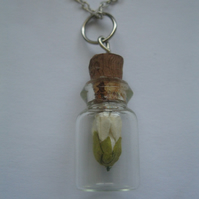 Fairy Tale Necklace Chain - Silver Gift glass present birthday floral jar beauty
