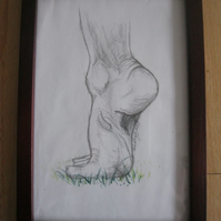 First Step  (original  framed pencil life drawing grass foot feet)