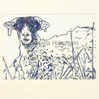 Print of Derawing -  Blue Sheep