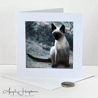 Greek Cat Square Blank Art Card