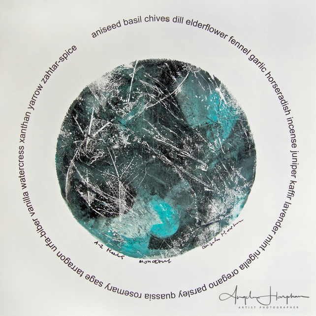 Monoprint Skeletonised Leaves A-Z Herbs Aquamarine