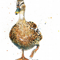 Limited Edition A4 Giclee Print of 'Honey' the Duck