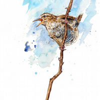 Limited Edition A4 Giclee Print of 'Songs Amidst the Brambles' the Wren