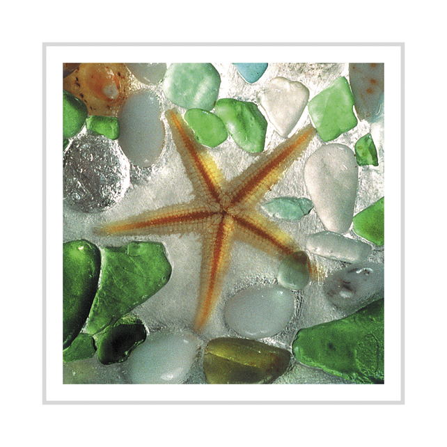Starfish and Sea Glass greeting card