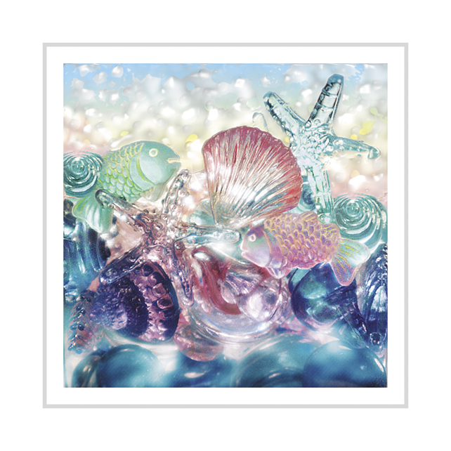 Jewels of the Sea greeting card
