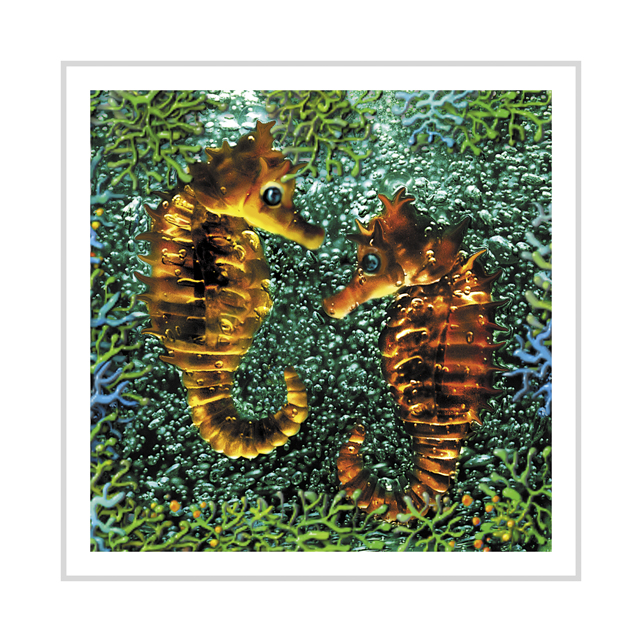 Amber Seahorses greeting card