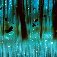 Night flight Giclée Print