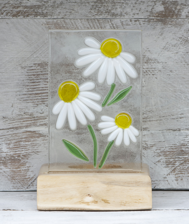 Daisies - Fused Glass Panel set in a Sycamore Tealight Holder