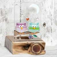 Fused Glass Owls sat under the Moon & Stars set in an Yew Tealight Holder
