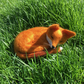 Needle felted model fox, sleeping fox woollen sculpture