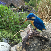 British birds, needle felted kingfisher