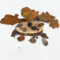 Needle felted acorns in natural autumn colours, home decoration,pack of 10