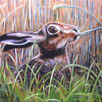 BROWN HARE, NIBBLES.  ORIGINAL NEW FRAMED OIL PAINTING.