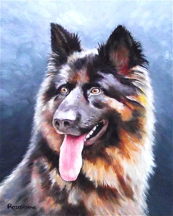 GERMAN SHEPHERD PORTRAIT,  ORIGINAL NEW FRAMED OIL PAINTING.