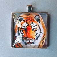 "Tiger pendant "" Siberian tiger "" from my original art work in domed glass."
