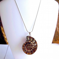 Ammonite fossil slice pendant on 925 silver snake chain.
