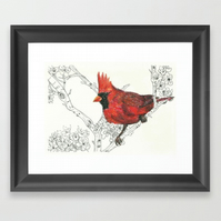 Northern Cardinal Red Bird - A4 print of original oil pastel and ink drawing