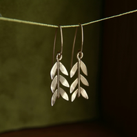 Gold Olive Branch Earrings, 9ct Gold,  Leaf Drop Earring