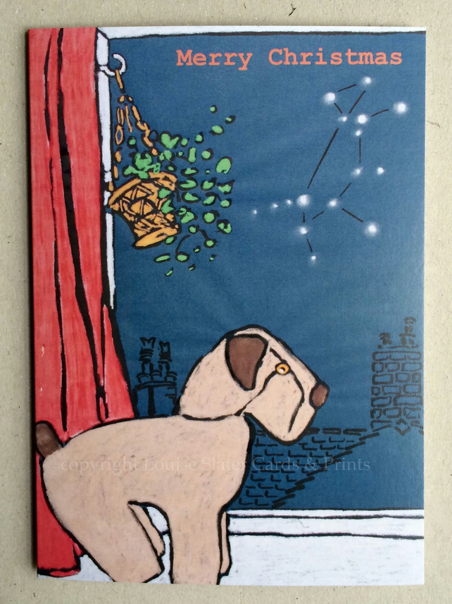 Christmas Canis Major Cards - Pk of 5