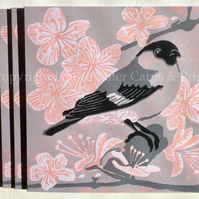 Grey Bullfinch & Blossom Card