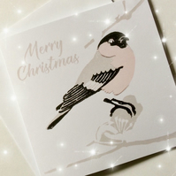 Pk 5 Christmas Pink Bullfinch Cards